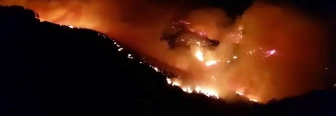 آتش سوزی گسترده در دو جزیره گردشگری اسپانیا و یونان ، هشدار مسافرتی و تخلیه هتل ها ، صدها نفر فرار کردند